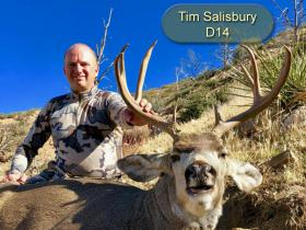 Tim Salisbury D14