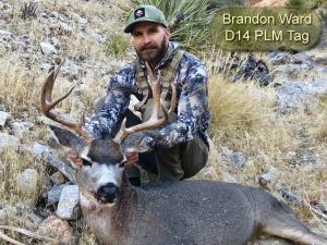 Brandon-Ward-D14-PLM-Tag
