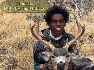 Damarion-D14-PLM-Tag-1st-buck